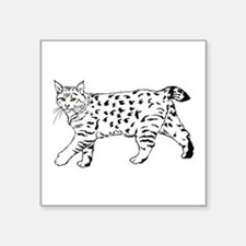 "Cute Polydactyl cat Square Sticker 3"" x 3"""
