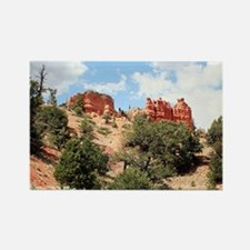 Red Canyon, Utah,USA 4 Rectangle Magnet