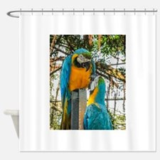 Blue And Yellow Macaw 1 Shower Curtain