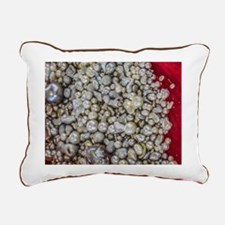 Treasure from the Sea Rectangular Canvas Pillow