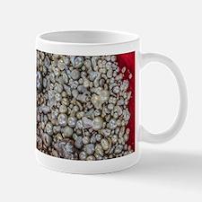 Treasure from the Sea Mugs