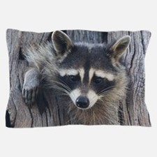 Raccoon in a Tree Pillow Case