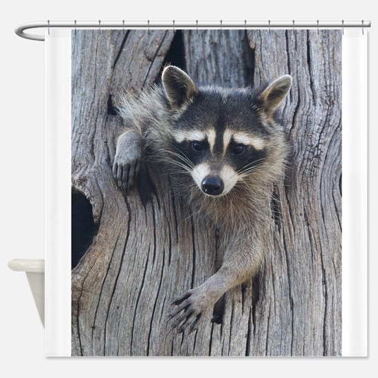 Raccoon in a Tree Shower Curtain