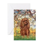 Spring and Ruby Cavalier Greeting Card