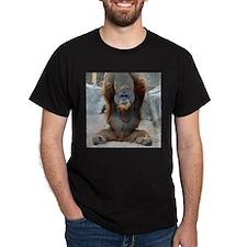 OrangUtan012 T-Shirt