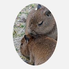 Capybara001 Oval Ornament
