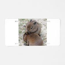 Capybara001 Aluminum License Plate