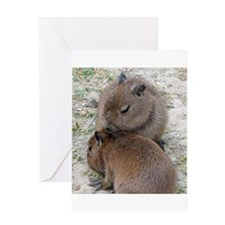 Capybara001 Greeting Cards