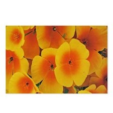 Yellow Poppy Flowers Postcards (Package of 8)