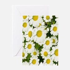 white daises Greeting Cards