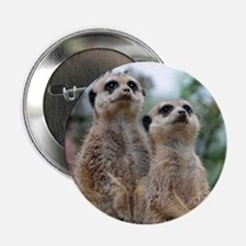 "Meerkat013 2.25"" Button (10 pack)"