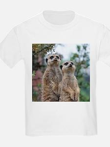 Meerkat013 T-Shirt