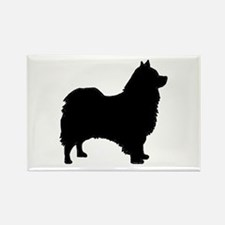 icelandic sheepdog silhouette Magnets