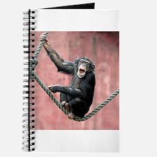 Chimpanzee001 Journal