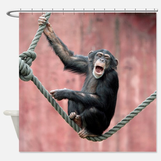 Chimpanzee001 Shower Curtain