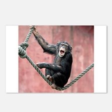 Chimpanzee001 Postcards (Package of 8)