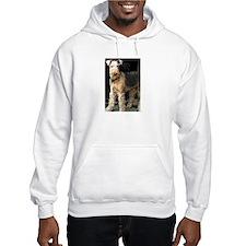 Airedale Terriers Hoodie