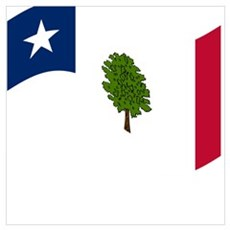 Waving Mississippi Secession Flag Poster
