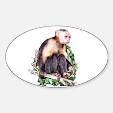 Monkey Business - Oval Decal