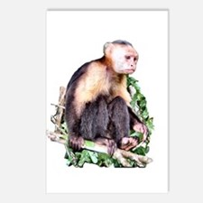 Monkey Business - Postcards (Package of 8)