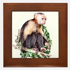 Monkey Business - Framed Tile
