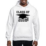 class of 2028 Hooded Sweatshirt