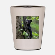 Black Bear Cub Shot Glass