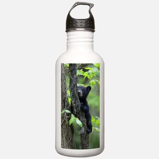 Black Bear Cub Water Bottle