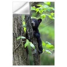 Black Bear Cub Wall Decal
