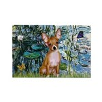 Lilies & Chihuahua Rectangle Magnet