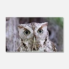 Owl Car Magnet 20 x 12