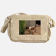 kooikerhondje puppy full Messenger Bag