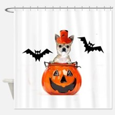 Halloween Chihuahua dog Shower Curtain