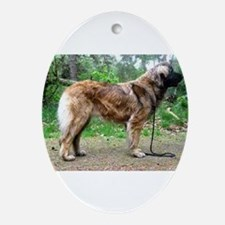 leonberger full Oval Ornament