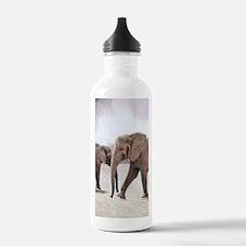 The Elephants Water Bottle
