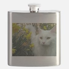 maine coon in daffodils Flask