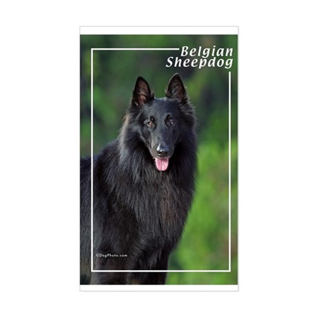 Belgian Sheepdog-1 Rectangle Sticker