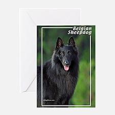 Belgian Sheepdog-1 Greeting Card