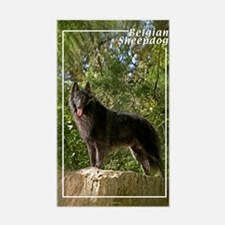 Belgian Sheepdog-2 Rectangle Decal