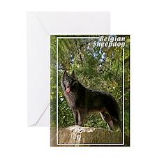 Belgian Sheepdog-2 Greeting Card