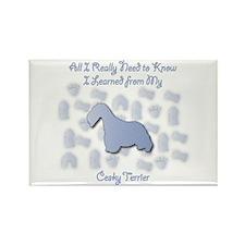 Learned Cesky Rectangle Magnet (100 pack)