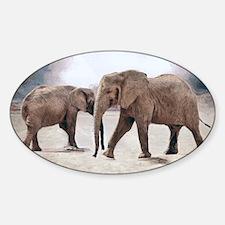 The Elephants Decal