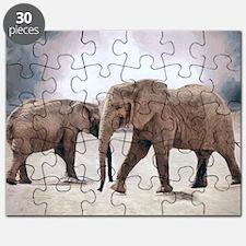 The Elephants Puzzle