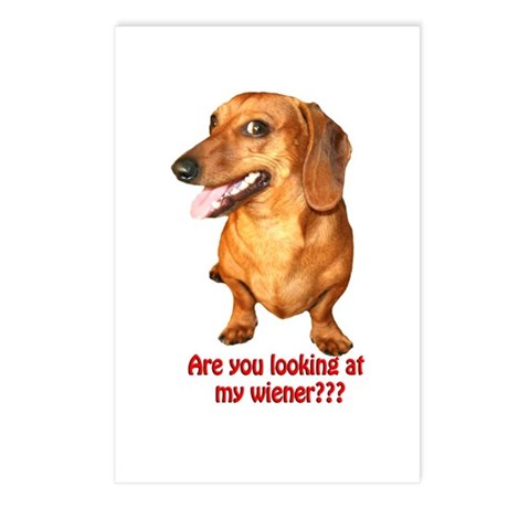 Looking at My Wiener Dachshund Postcards (Package