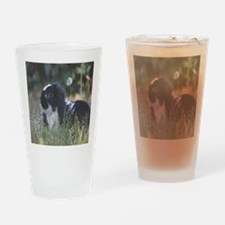 Black & White Mini Lop Drinking Glass