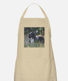 Black & White Mini Lop Apron