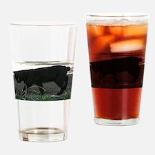 manx full 2 Drinking Glass