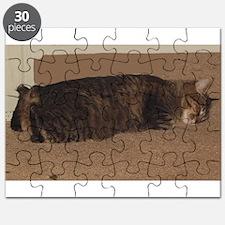 manx sleeping Puzzle