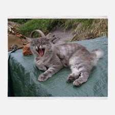 norwegian forest cat grey tabby yawning Throw Blan