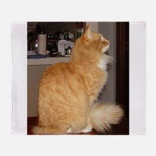 norwegian forest cat orange tabby sitting Throw Bl